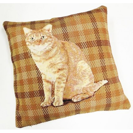 Cuscino con gatto marrone